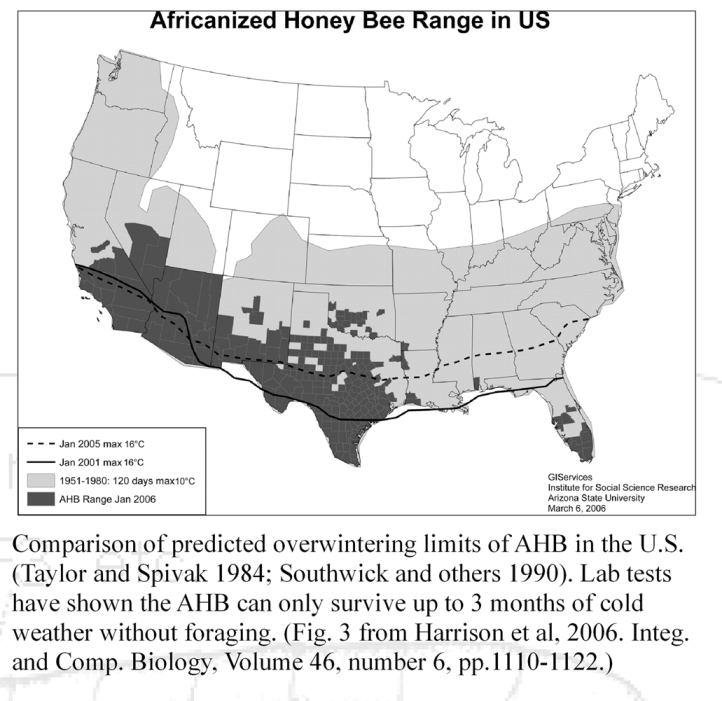 Africanized Honey Bees (AHB) on killer bees in new jersey, killer bee map 2014, killer bees in california, killer bees in new mexico, killer bees in arizona, killer bees in america, killer bees in japan, killer bees in utah, killer bees in united states, killer bees in kansas, killer bees in michigan, fire ants in usa map, hurricanes in usa map, killer bees in florida, killer bees in oregon, africanized bees map, killer bees in wisconsin, killer bees in china, killer bee migration map, killer bees in alabama,